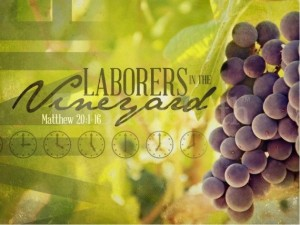 parable-workers-vineyard-570x427